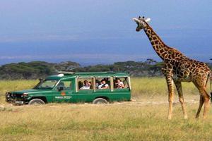 """肯尼亚""""体验式旅游""""渐受中国游客青睐"""