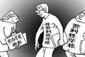 """欢迎光临""""中学有限公司"""":营利性民办学校上路"""