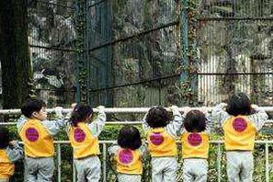 韩国多所私立幼儿园涉腐:挪用运营费买名牌包
