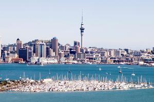 三分之一新西兰人曾被骗 诈骗手段日益复杂