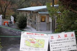 日本岐阜县学校发现猪瘟 系县内饲养设施第5例