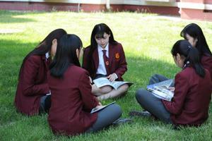 怎么选国际学校的普通班与国际班?