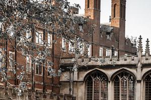 英国八所精英中学年考入牛津和剑桥生达数百人