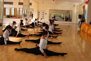济南大学等高校舞蹈类专业联考 山东计划招572人