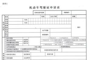 华人回中国持国际驾照开车被罚 须换领中国驾照