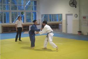 教育部:柔道、摔跤等高水平运动队项目今年停招