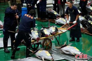 华人经营者披露日本黑社会索取保护费内幕
