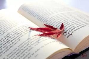 国际生须知:99%的学霸都在用的国外学习网站