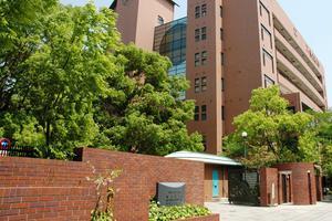 日本大阪大学宣布已故副教授多篇论文造假