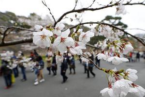 日本移民政策现重大转向 或5年吸引逾34万外籍劳动者