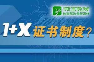 职业广东11选51+X证书制度来了 首批将在5个领域试点
