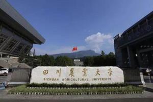 2019中国五线城市最好大学排名 四川农业大学第一
