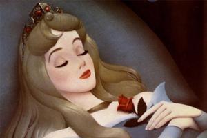 """用""""睡美人""""比喻论文 荷兰教授被学术期刊退稿"""