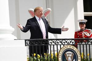 """特朗普又要對移民制度""""動刀"""""""