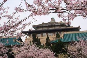 2019湖北省一流專業排名:武漢大學第一