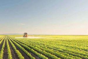 武書連2019中國大學農學排行榜
