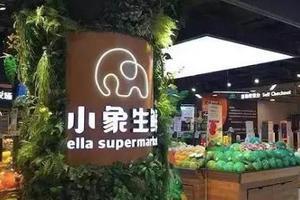 关闭5家小象生鲜 美团点评玩不转新零售?