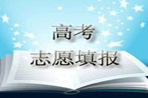 """高考志愿填报""""潜""""规则 量体裁衣最重要!"""