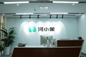 2019新浪五星金牌教师候选机构:河小象