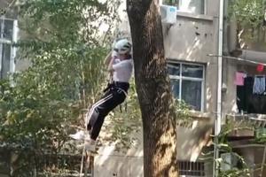 高校将爬树设为全校选修课:既好玩又有教育意义