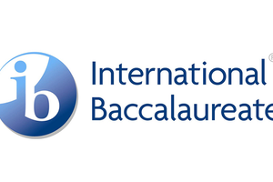 IB辅导课程每个阶段分析 哪个阶段更适合你的孩子?