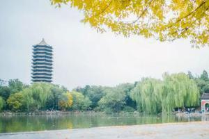 2020年北京大学非全日制公共管理硕士研究生招生简章