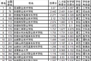 武书连2019安徽省高职高专综合实力排行榜