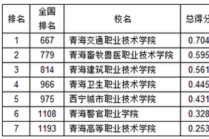 武书连2019青海省高职高专综合实力排行榜