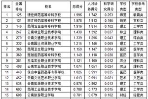 武书连2019云南省高职高专综合实力排行榜
