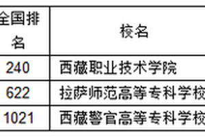 武書連2019西藏高職高專綜合實力排行榜