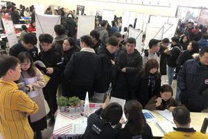 北京2020年美术类专业统考分数线划定