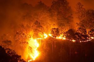 """BBC媒体英语:澳大利亚 """"灾难级"""" 林火仍在燃烧"""
