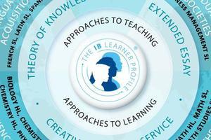 AP课程与IB课程的区别到底是什么