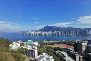 香港中文大学(深圳)管理学硕士2020级招生简章