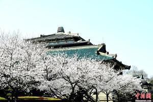武汉大学教育科学研究院2020年专硕研究生调剂通知