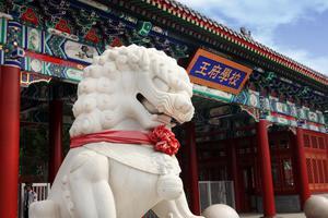 新浪2020云择校-北京王府学校帮助每个孩子找到更好的自己