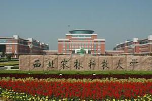 2020中国三线城市最好优信彩票大学 排名 西农林第一