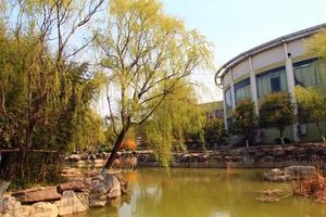 东南大学4月19日起错峰开学 博士及毕业班优先返校