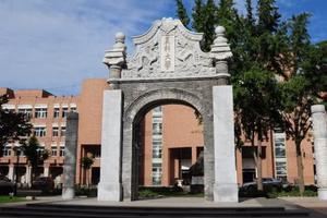 北京新高考开始模拟志愿填报 只涉及本科层次