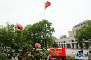 北京大学2019年各地高考录取分数线