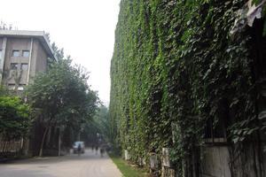 2020中国762所大学本科毕业生质量排行榜公布