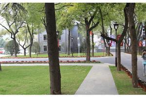 南京中医药大学2020年全日制普通本科招生章程