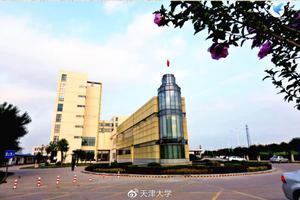 天津大学2020年高考招生章程