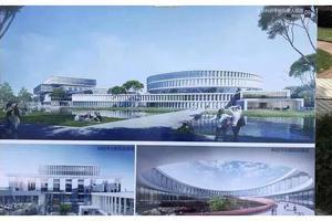 河海大学2020年高考招生章程