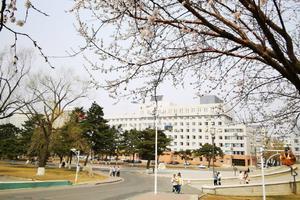 东北师范大学2021年高校专项计划招生简章