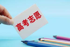 北京市教委:高考志愿填报不要简单地承包或委托给别人