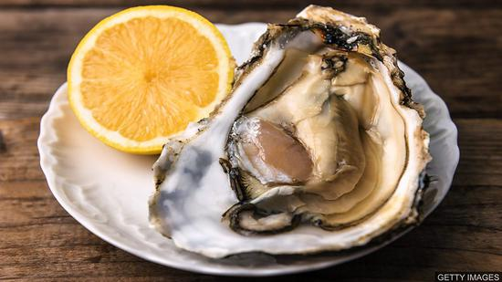 BBC英语大破解: Oysters thrive in new home