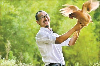老沈和他养的鸡
