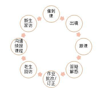 图:辅导老师工作内容及流程图