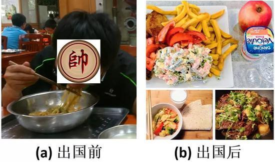 图3 不同阶段的饮食结构变化